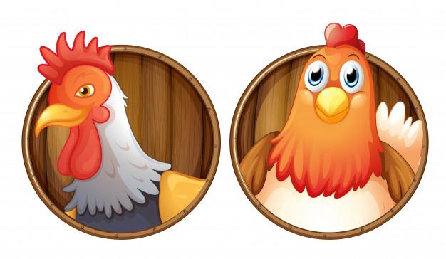 gallo-y-gallina-en-placa-de-madera_1308-16916
